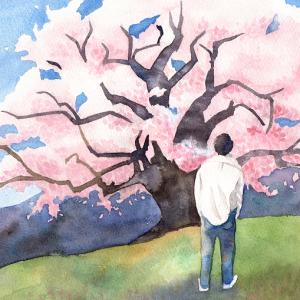 桜浪漫Favicon