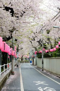染井稲荷神社前
