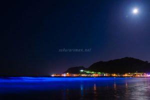 由比ヶ浜の青い海夜光虫1