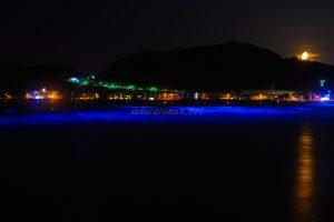 由比ヶ浜の青い海 夜光虫と月の入り