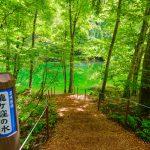新潟県のパワースポット、津南町の決して濁らない名水「龍ヶ窪」